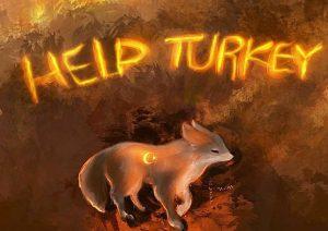 Help Turkey