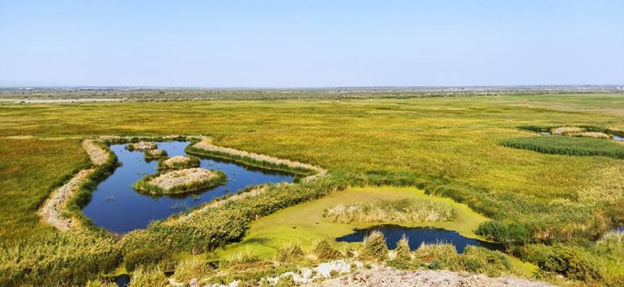 Khor Virap reserve