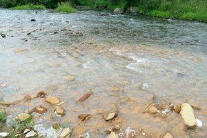 Chknagh river